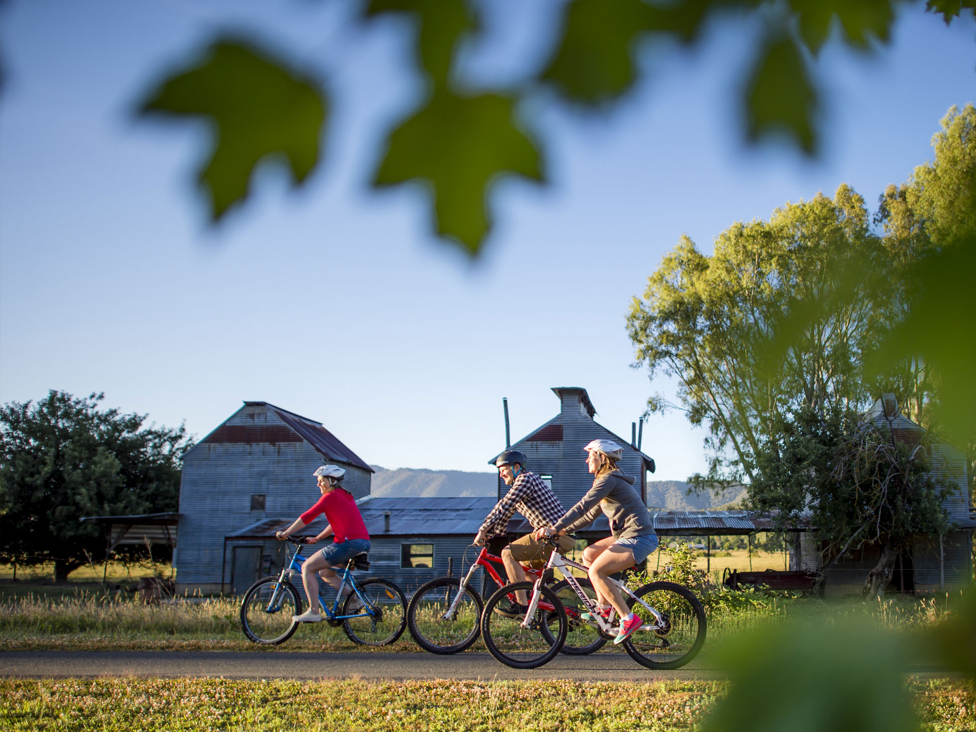 Rail Trail Cycling